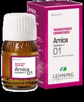Lehning Arnica Complexe N° 1 Solution Buvable En Gouttes Fl/30ml à CHENÔVE