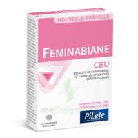 Pileje Feminabiane Cbu 30 Comprimés Bicouches à CHENÔVE