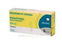 PARACETAMOL TEVA CONSEIL 500 mg, comprimé à CHENÔVE