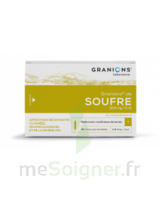 Granions De Soufre 19,5 Mg/2 Ml S Buv 30amp/2ml à CHENÔVE