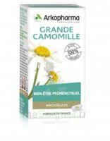 Arkogélules Grande Camomille (partenelle) Gélules Fl/45 à CHENÔVE