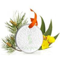 Puressentiel Diffusion Diffuseur Céramique galet médaillon pour Huiles Essentielles à CHENÔVE