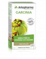 Arkogélules Garcinia Gélules Fl/45 à CHENÔVE