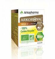 Arkoroyal 100% Gelée Royale Bio Gelée Pot/40g à CHENÔVE