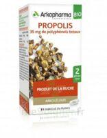 Arkogélules Propolis Bio Gélules Fl/45 à CHENÔVE