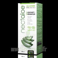 Nectaloe gel aloe vera à CHENÔVE