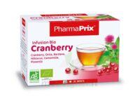 Infusion BIO Cranberry à CHENÔVE