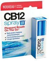CB 12 Spray haleine fraîche 15ml à CHENÔVE