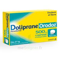 Dolipraneorodoz 500 Mg, Comprimé Orodispersible à CHENÔVE