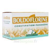 Boldoflorine, Mélange De Plantes Pour Tisane En Sachet-dose B/24 à CHENÔVE