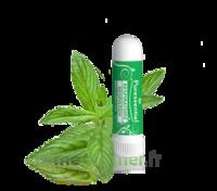 Puressentiel Respiratoire Inhaleur Respiratoire aux 19 Huiles Essentielles - 1 ml à CHENÔVE
