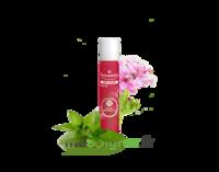 PURESSENTIEL ANTI-PIQUE Roller 11 huiles essentielles à CHENÔVE