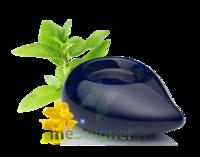 PURESSENTIEL DIFFUSION Diffuseur à chaleur douce céramique bleu marine à CHENÔVE