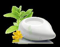 PURESSENTIEL DIFFUSION Diffuseur à chaleur douce céramique blanc à CHENÔVE