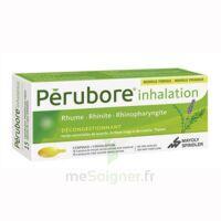 Perubore Caps Inhalation Par Vapeur Inhalation Plq/15 à CHENÔVE