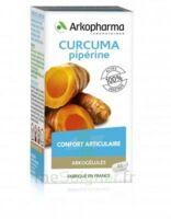 Arkogelules Curcuma Pipérine Gélules Fl/45 à CHENÔVE