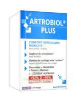 Ineldea Artrobiol Plus 120 Gélules à CHENÔVE