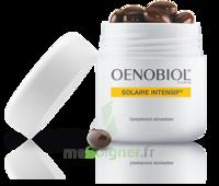Oenobiol Solaire Intensif Caps Pots/30 à CHENÔVE