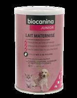 Biocanina Lait poudre maternisé B/400g à CHENÔVE