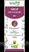 Herbalgem Sirop Bio Des Fumeurs 150ml à CHENÔVE
