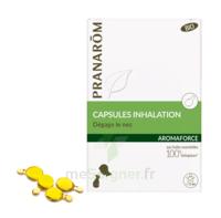 Aromaforce Caps Inhalation Bio B/15 + Inhalateur à CHENÔVE
