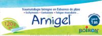 Boiron Arnigel Gel T/120g à CHENÔVE