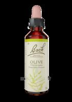Fleurs De Bach® Original Olive - 20 Ml à CHENÔVE