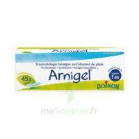 Boiron Arnigel Gel T(alumino-plastique)/45g à CHENÔVE