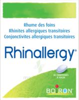 Boiron Rhinallergy Comprimés B/40 à CHENÔVE