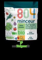 804® Minceur Soupe Silhouette Bio Sachet/180g à CHENÔVE