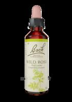 Fleurs De Bach® Original Wild Rose - 20 Ml à CHENÔVE