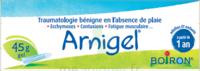 Boiron Arnigel Gel T/45g à CHENÔVE